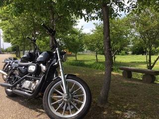 バイク .JPG